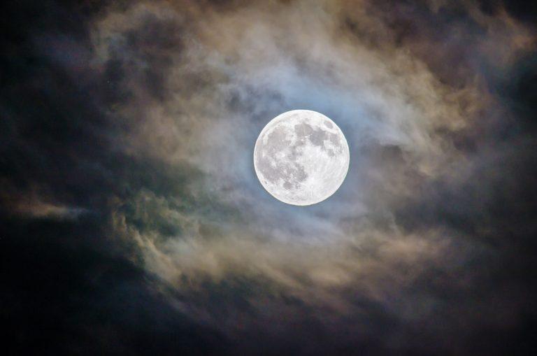 Altcoins moon