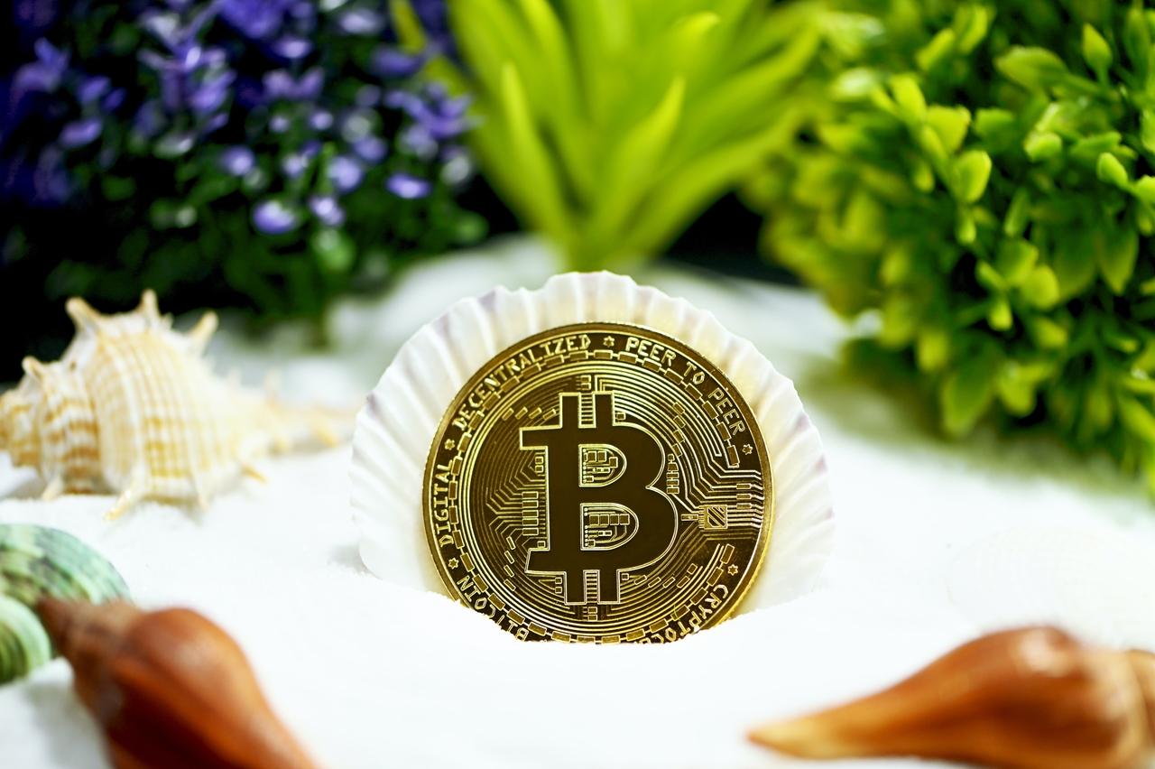 """""""Grüne"""" Kryptowährungen – Die Top 3 umweltfreundlichen Coins"""