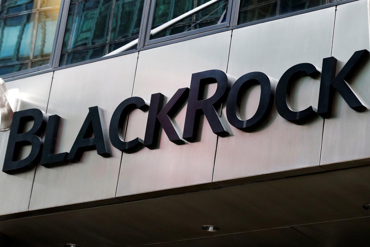 BlackRock CEO: Bitcoin könnte ein Wertspeicher sein, aber Markt noch sehr klein