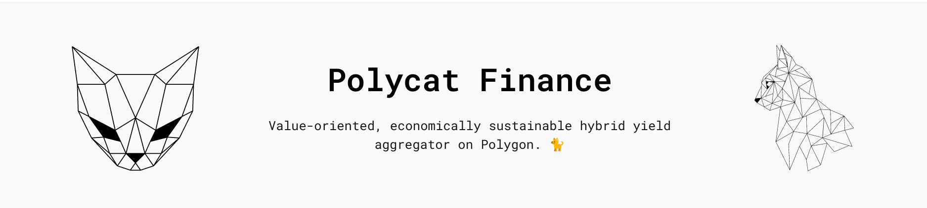 polycat DeFi