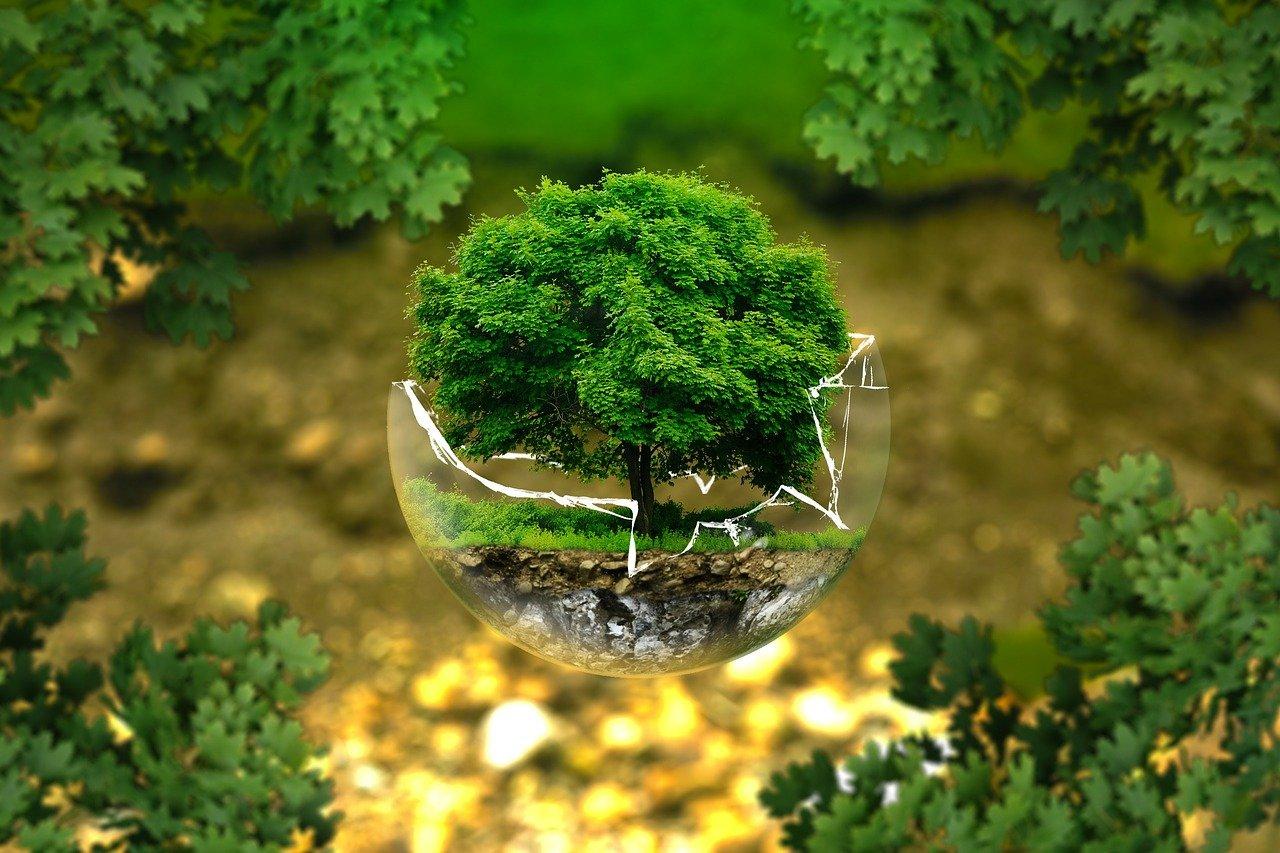 Green Ethereum