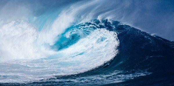 waves price